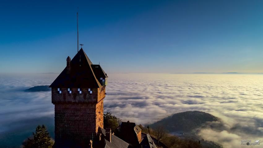 Haut-Koenigsbourg (67) au lever du jour sur un océan de nuages